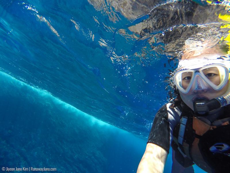 Snorkeling in Rapa Nui