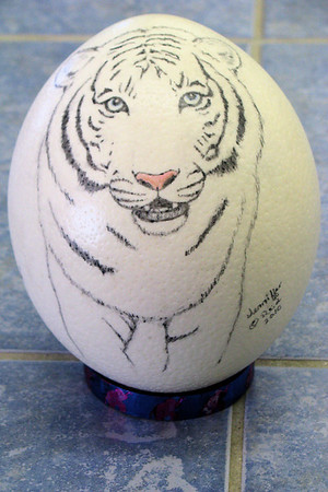 Nash Egg - SOLD