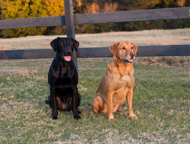 Lana & Bella at Whiskey Hollow Ranch