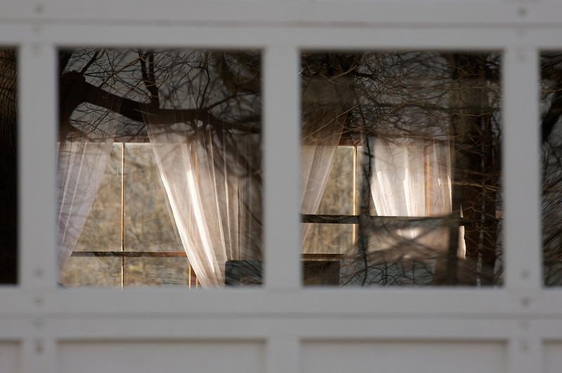 Lynch Park Window