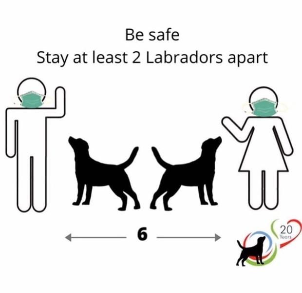 labspacing.jpg