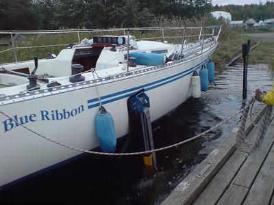 Blue Ribbon laying up 2007