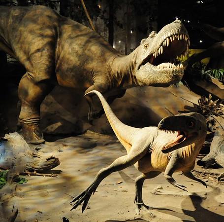Jurassic Alberta - Dinosaur Country
