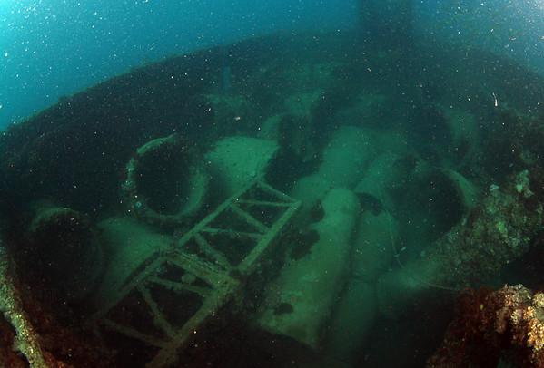 Cochrane Artificial Reef, Elliott River, Queensland