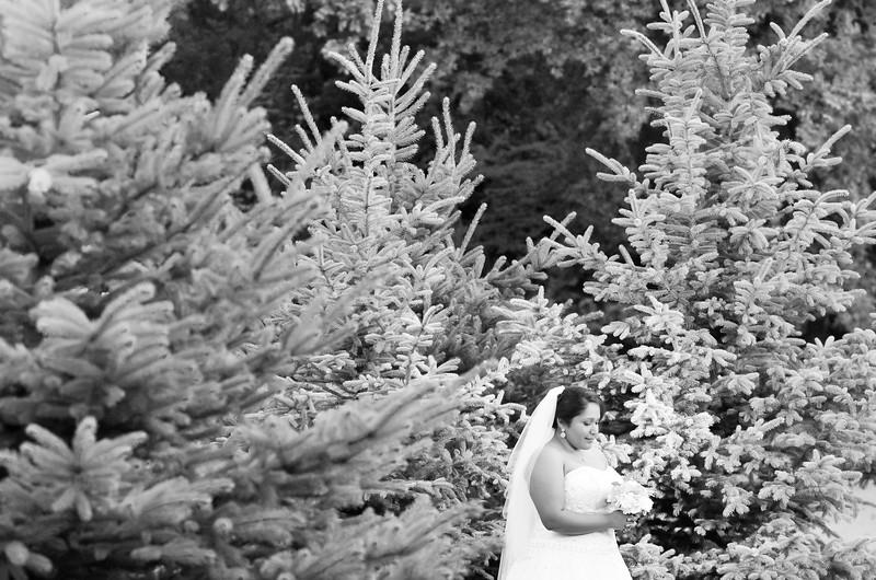 Laura Mendez Bridals 2014