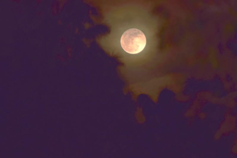 100a Super Moon 12-3-17.jpg