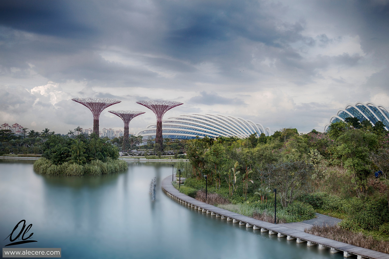 At first glance - The Gardens by the Bay in Singapore