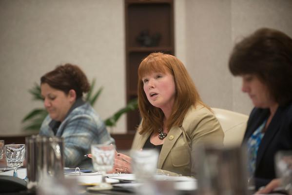 Board of Directors Meeting- Jan 2014