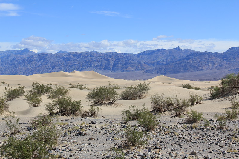 20190519-51-SoCalRCTour-Mesquite Flat Sand Dunes-DeathValleyNP.JPG