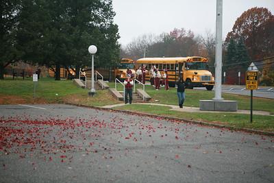 11-8-2008