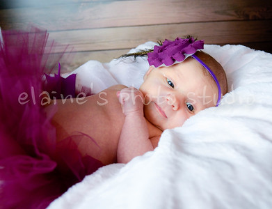 Harper Baby