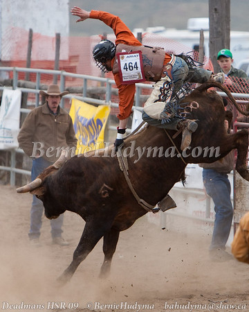 Bull Riding _ Deadmans HSR 09