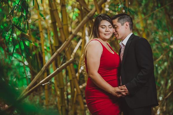 karina and albert engagement