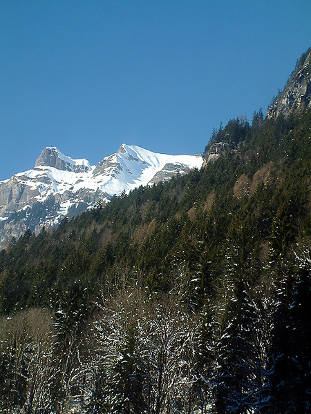 Grindelwald Mountainside.jpg