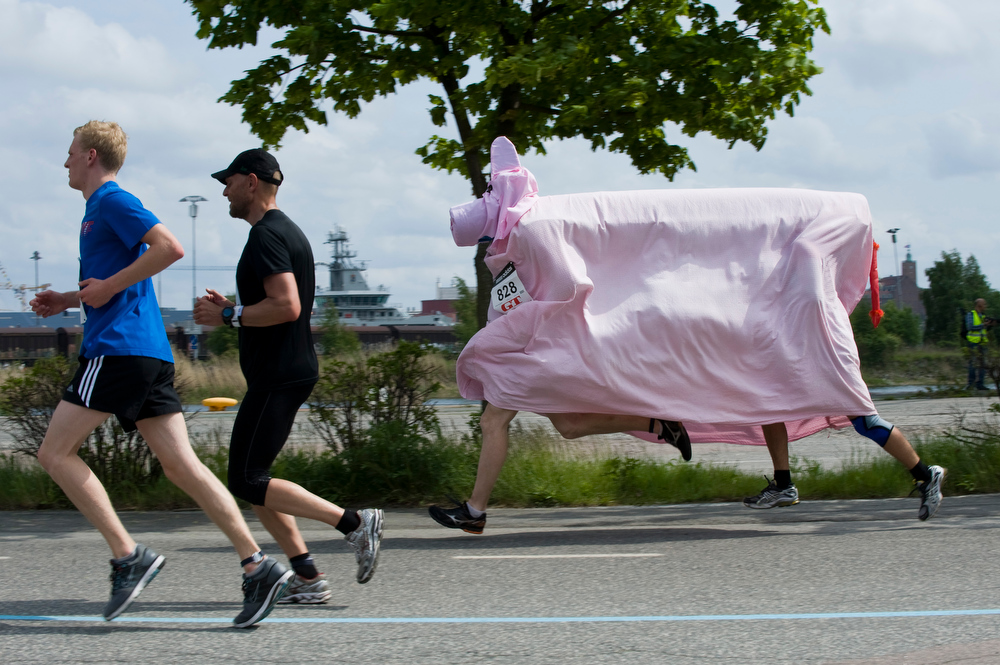 Description of . People dressed up as a pig run the Gothenburg Half Marathon on May 21, 2011 in Gothenburg.  AFP PHOTO / JONATHAN NACKSTRAND