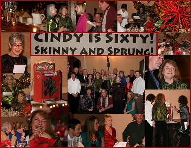 Cindy's 60th Party