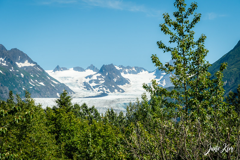 The view of Grewingk Glacier from the Saddle Trail