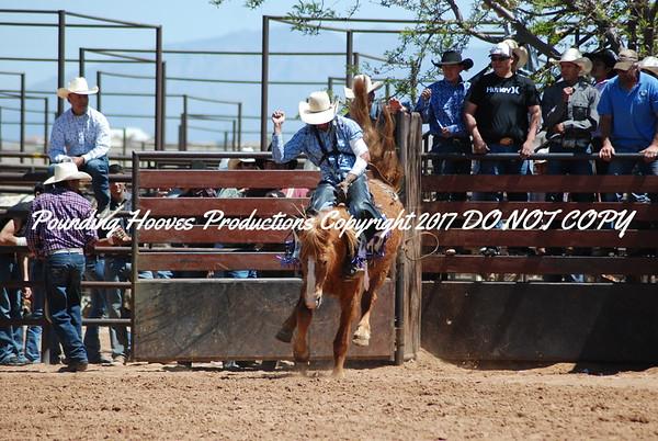 Bareback Horses 4-18-12
