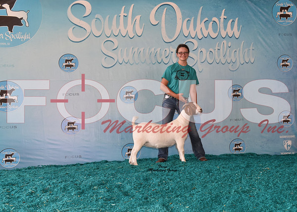 2017 South Dakota Summer Spotlight