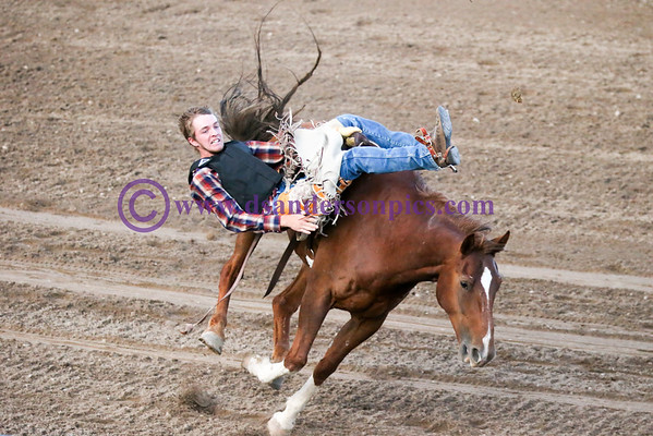 2015 08 01 BLUFFDALE CITY RODEO