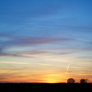 Sunsets 2011