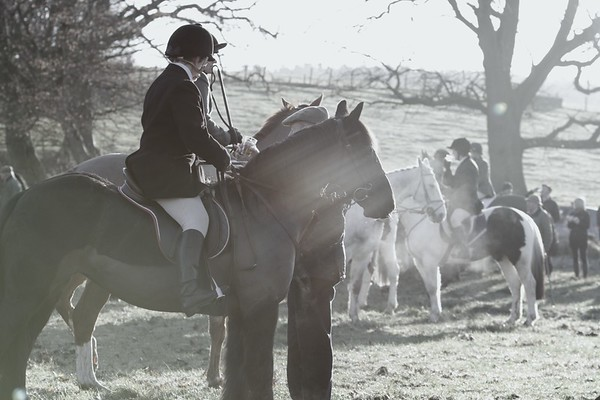 Buccleuch Hunt - Boxing Day 2013