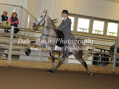 CLASS 5  AMATEUR OWNED & TRAINED SPEC