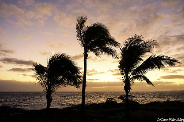 1-  Hawaiian Paradise County Park