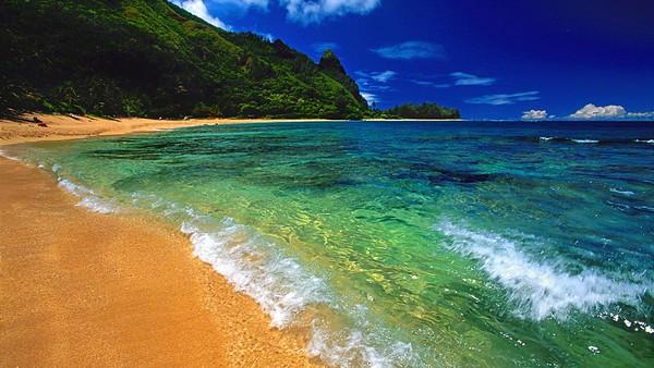 Hawaiian Backgrounds