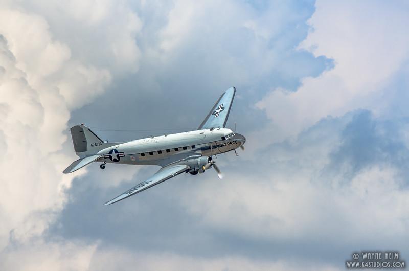 Dandy in Flight   Photography by Wayne Heim