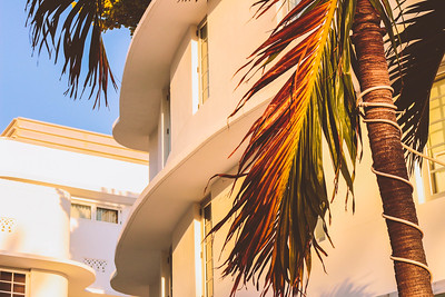 South Beach is petrified in the minds of many as a place permanently tethered to the glorious bygone years of  Hollywood's golden era. The well-preserved art deco decor bridges one's imagination to that time but does so without taking anything from the present moment. It is one part sass, one part timelessness. Both mixed with a dash of good taste and a naughty line.