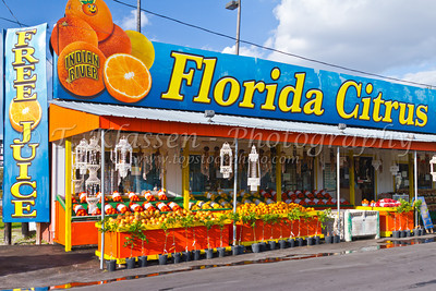 Florida Citrus Fruit