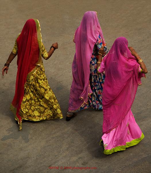 INDIA2010-0208A-59A.jpg