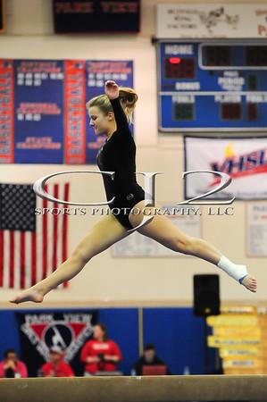2-2-2013 Dulles District Gymnastics Meet