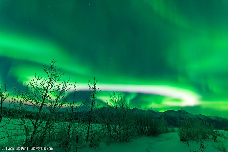 Nov20_Knik River Aurora-Juno Kim-6105195.jpg