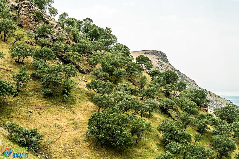 Ahmad-Awa-Waterfalls-07158.jpg