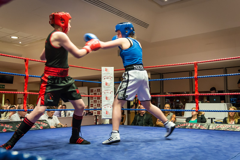 -Boxing Event March 5 2016Boxing Event March 5 2016-11980198.jpg
