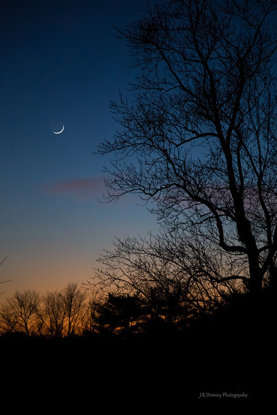 A Clear Winter Evening - December 14, 2012 Tall Pine State Preserve, Mantua, New Jersey