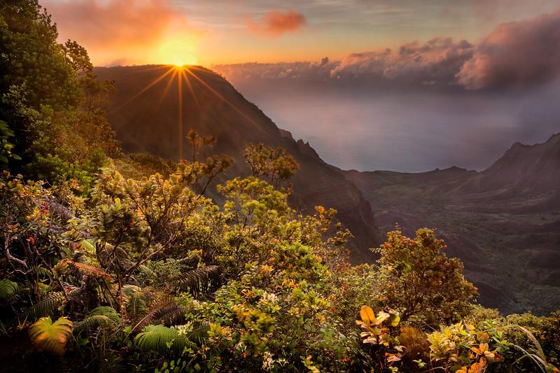 Sunstar at Pu'u Kila Lookout