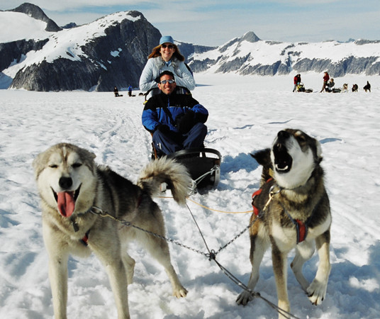 Dog Mushing 592 x 497