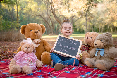 Lily's Teddy Bear picnic