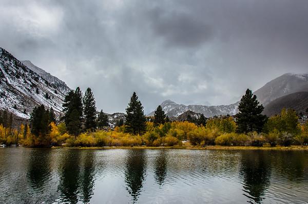 Eastern Sierra Fall Colors 2013