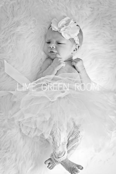 Harper Jayne Newborn