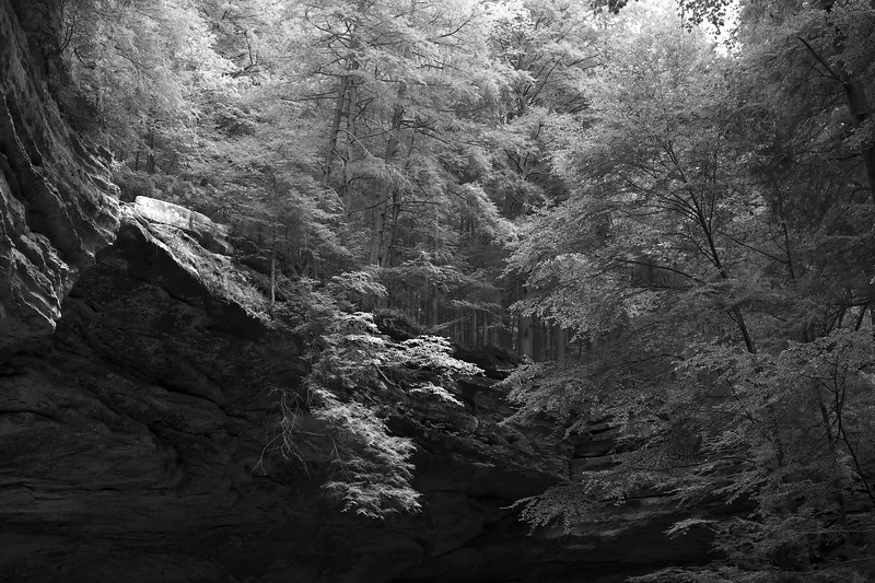 Ash Cave Full.jpg