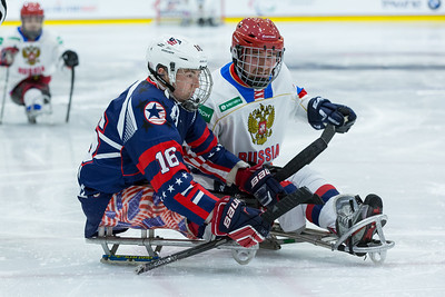 2015 IPC Sled Hockey World Championships