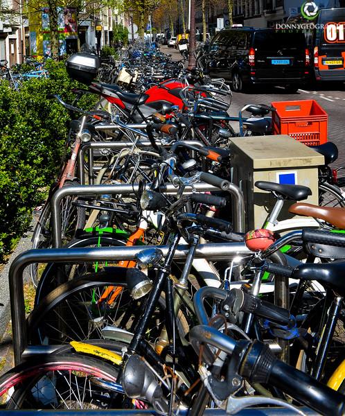 bikes forever.jpg