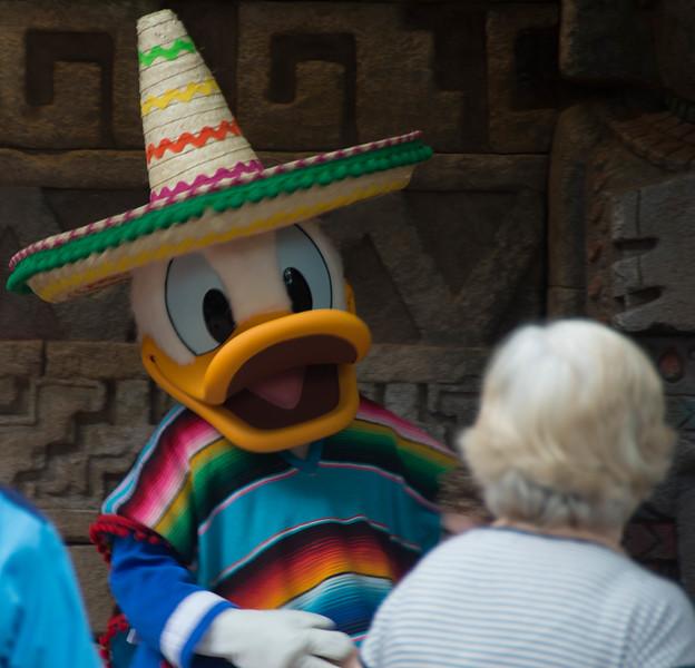 Disney World241.jpg