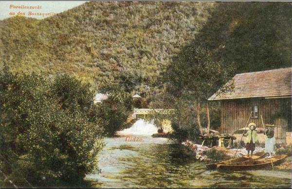 Vrelo Bosne,1911.g..jpg