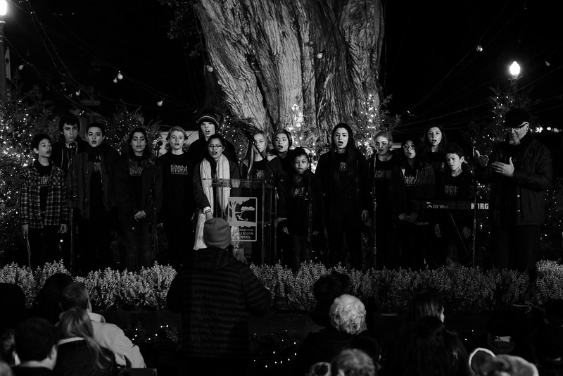 Holiday Tree Lighting Ceremony 2016