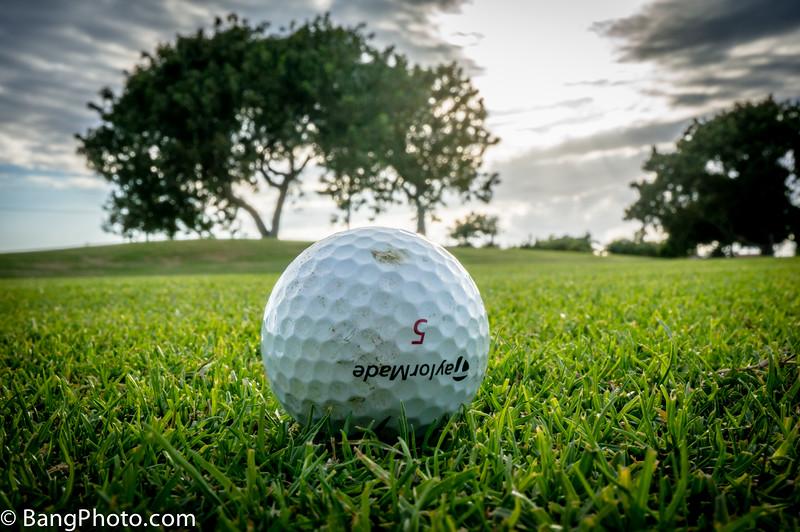 Golf 2-38.jpg